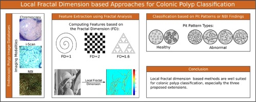 Local fractal dimension based approaches for colonic polyp