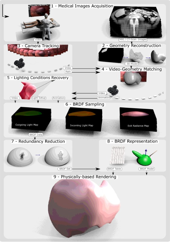 A laparoscopy-based method for BRDF estimation from in vivo human