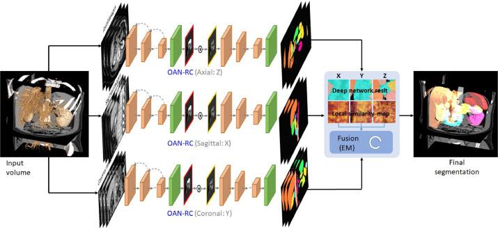 Abdominal multi-organ segmentation with organ-attention