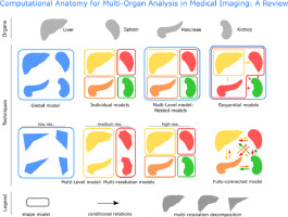 Computational anatomy for multi-organ analysis in medical imaging: A