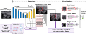 Automated Detection And Classification Of Thyroid Nodules In Ultrasound Images Using Clinical Knowledge Guided Convolutional Neural Networks Sciencedirect