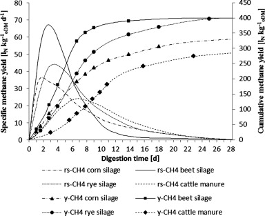 Review of concepts for a demand-driven biogas supply for flexible ...