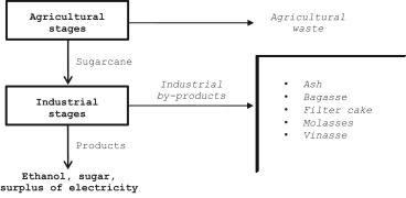 Life cycle assessment of the sugarcane bagasse electricity