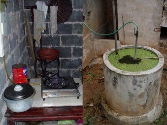 Small-scale household biogas digesters: An option for global