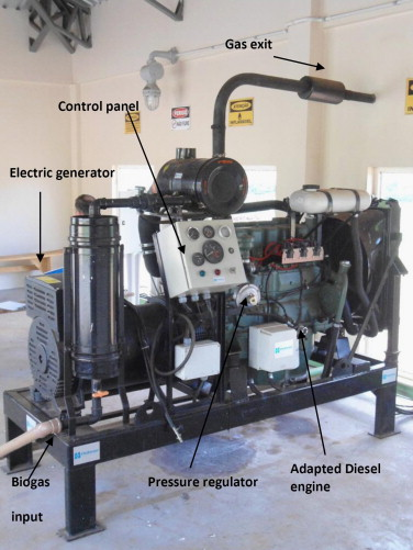 Brazilian case study for biogas energy: Production of electric power