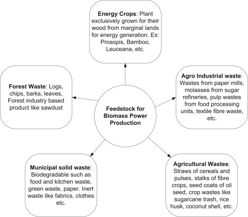 A review on biomass energy resources, potential, conversion