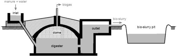 Ethiopia׳s emerging domestic biogas sector: Current status