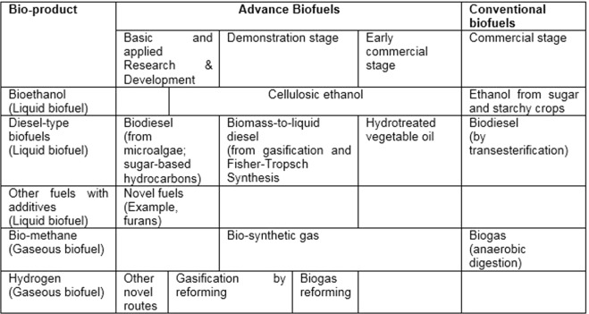 Biomass resources and biofuels potential for the production
