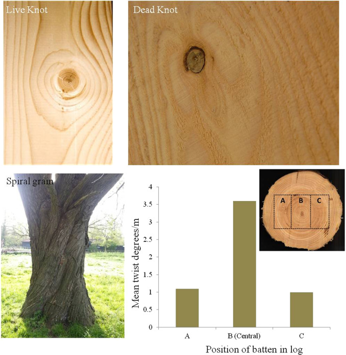 The Wood From The Trees The Use Of Timber In Construction