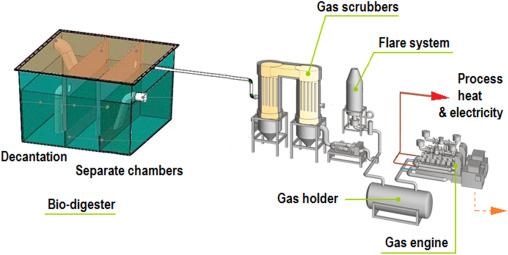 Waste bio-refineries for the cassava starch industry: New