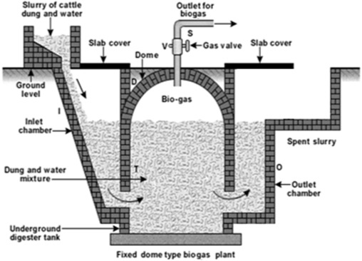 Project scheduling for constructing biogas plant using