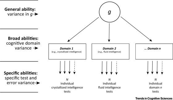 Network Neuroscience Theory of Human Intelligence