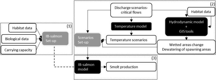 Identification of salmon population bottlenecks from low flows in a