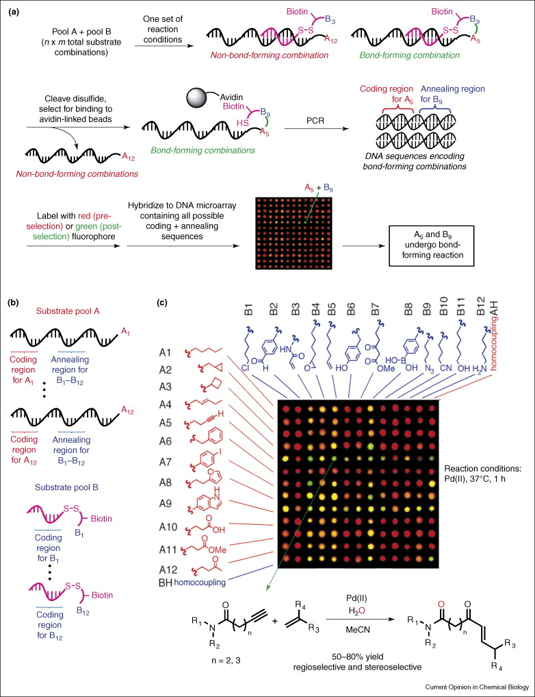 Solving chemical problems through the application of evolutionary ...