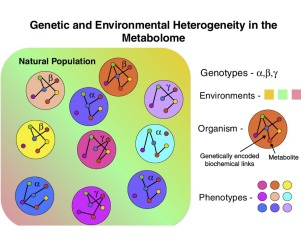 Considerations when choosing a genetic model organism for