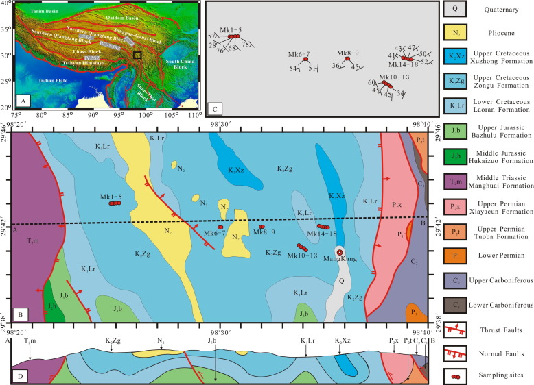 Paleomagnetism of Upper Cretaceous redbeds from the eastern