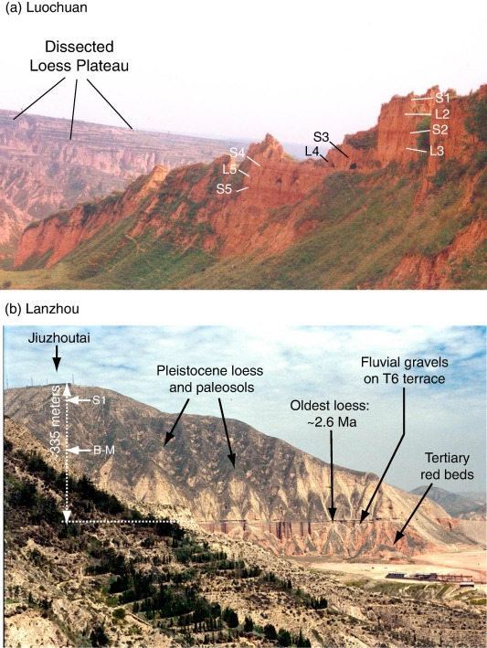 The geochemistry of loess: Asian and North American deposits