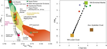 Role of mantle and lower continental crust in the genesis of