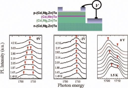 Engineering magnetism in semiconductors - ScienceDirect