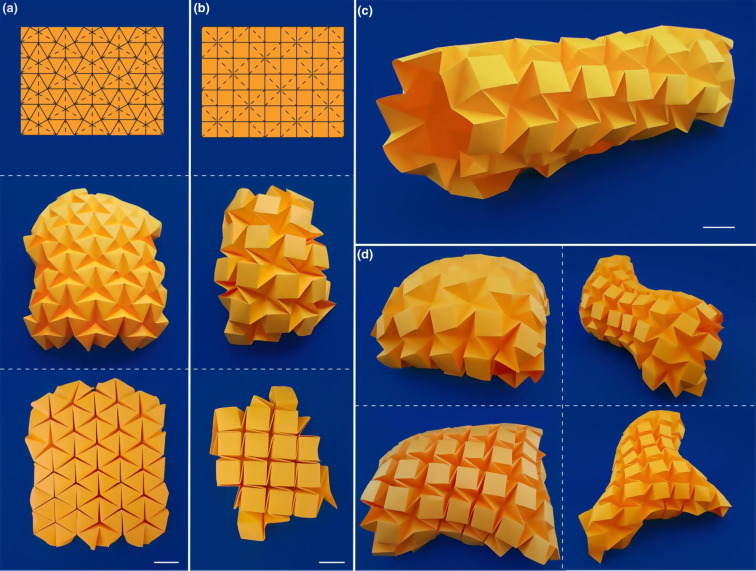 Curved Fold Origami - Leopard on Behance   571x756