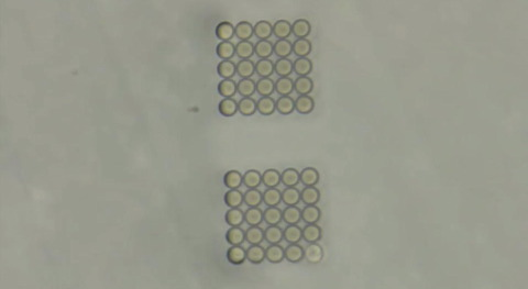 Fabrication of soft, stimulus-responsive structures with sub-micron