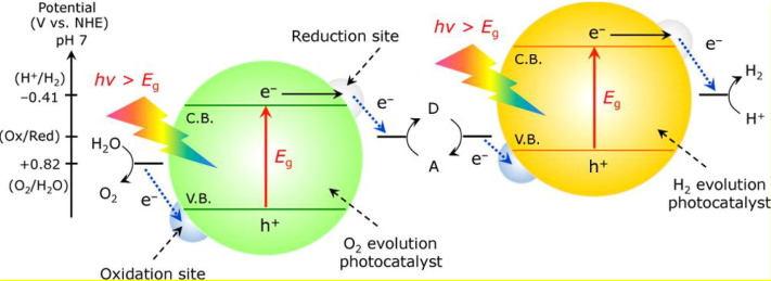 Recent Advances In Visible Light Driven Water Oxidation And