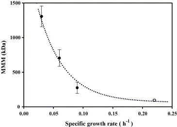Specific growth rate determines the molecular mass of the