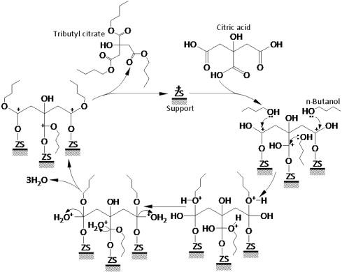 Esterification Of Citric Acid With N Butanol Over Zirconium Sulfate