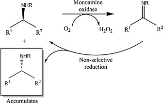 process characterization of a monoamine oxidase sciencedirect