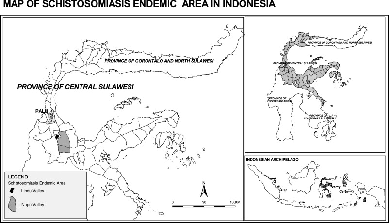 schistosomiasis bali)