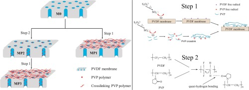 Poly Vinyl Pyrrolidone Modified Poly Vinylidene Fluoride Ultrafiltration Membrane Via A Two Step Surface Grafting For Radioactive Wastewater Treatment Sciencedirect