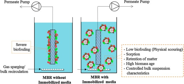 Recent developments in biofouling control in membrane