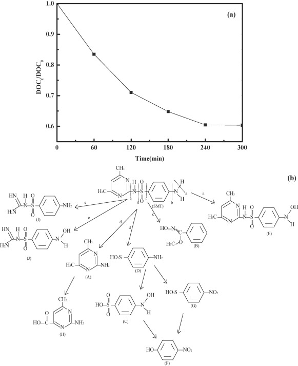 Enhanced Photocatalytic Degradation Of Sulfamethazine By Bi Doped