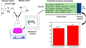 Synthesis and characterization of water-soluble chitosan