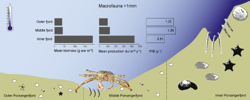 Macrobenthic Biomass And Production In A Heterogenic Subarctic Fjord