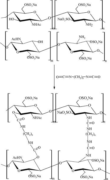Amphoteric composite membranes for nanofiltration prepared from ...