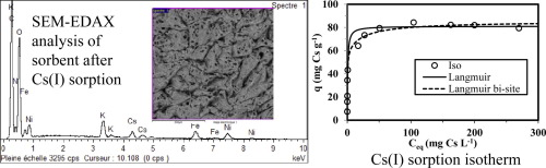 Immobilization of inorganic ion-exchanger into biopolymer