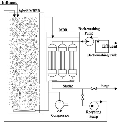 Nitrogen removal in a moving bed membrane bioreactor for