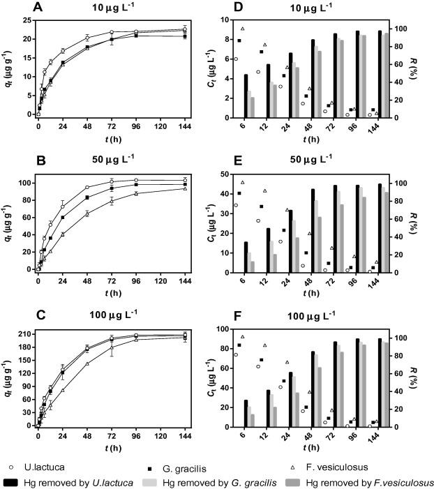Study on bioaccumulation and biosorption of mercury by