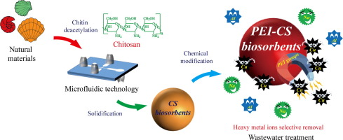 Treatment To Remove Metals From >> Functionalized Chitosan Biosorbents With Ultra High