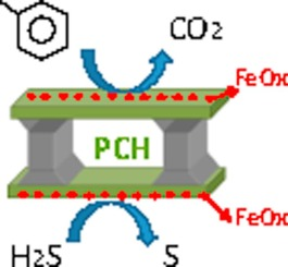 Porous clays heterostructures as supports of iron oxide for