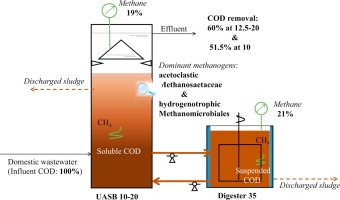 Anaerobic treatment of raw domestic wastewater in a UASB
