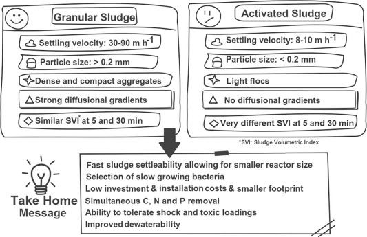 An integrative review of granular sludge for the biological removal