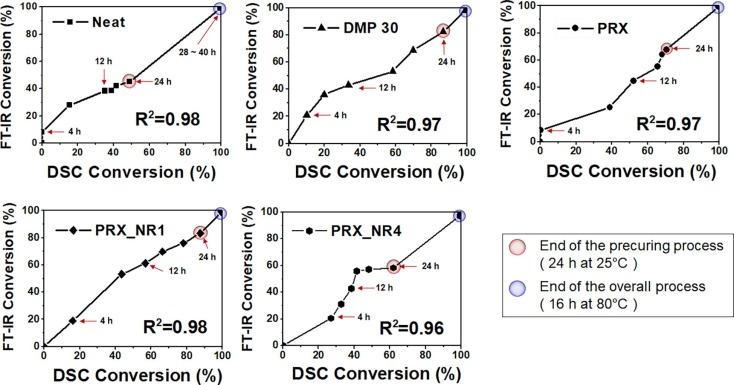 Development of a supramolecular accelerator simultaneously to