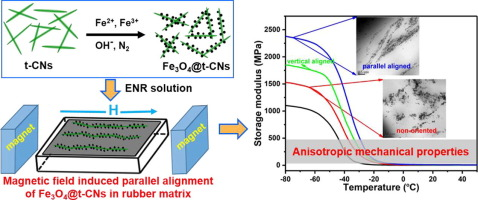 Anisotropic rubber nanocomposites via magnetic-induced alignment of