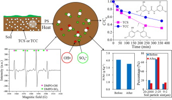 Degradation of Triclosan in soils by thermally activated persulfate