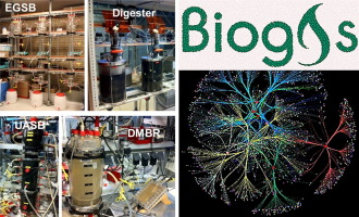 Biogas productivity of anaerobic digestion process is