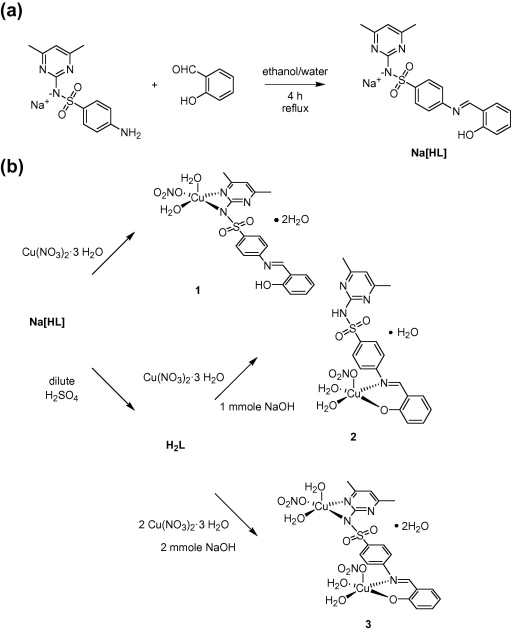 Selective Coordination Ability Of Sulfamethazine Schiff Base Ligand