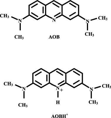 The Effect Of Dimethylsulfoxide On Absorption And Fluorescence