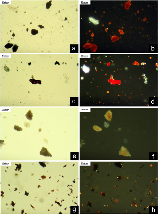 Micro-Raman spectroscopy in the identification of wulfenite